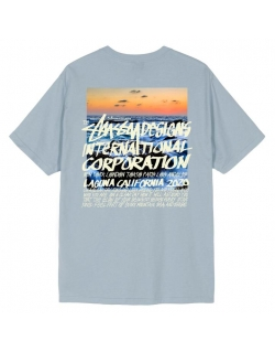 STUSSY CLEAR DAY TEE SLATE